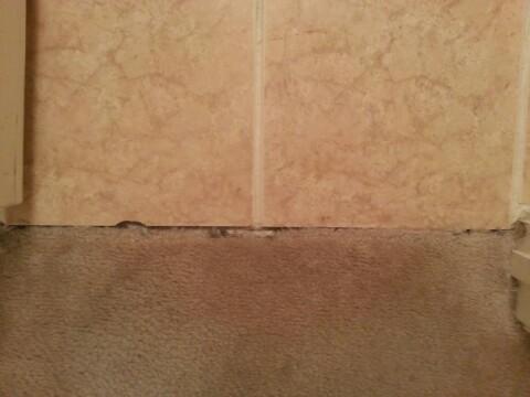carpet transition-1350747203945.jpg
