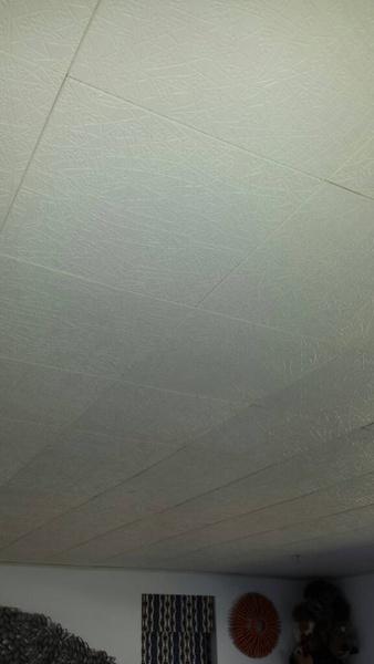 Ceiling tiles-1427390185762.jpg