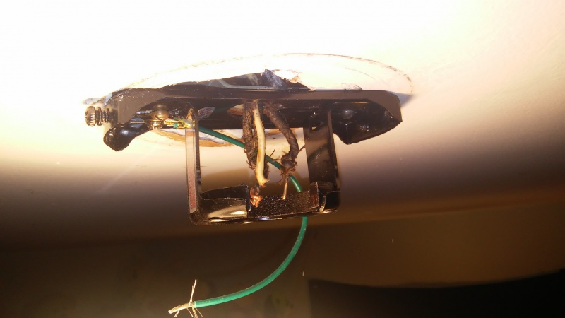 please help ceiling fan wired incorrectly with pictures-1476659033672.jpg