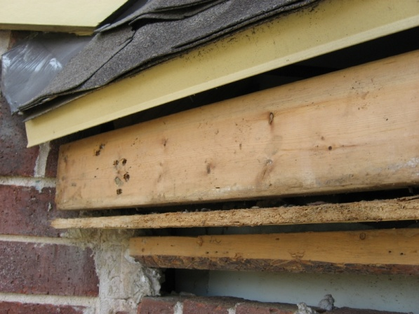 How to replace a partially rotted soffit that's sandwiched in-152.jpg