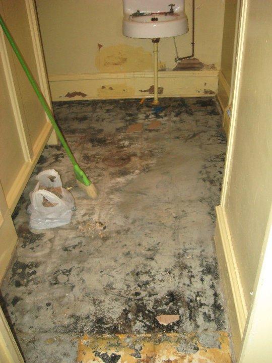 asbestos problem under glued down carpet