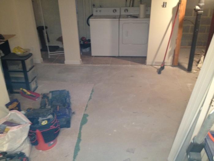 2012 - Basement demo-2-13-12-8.jpg