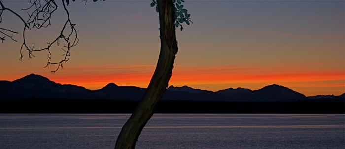 Gulf Island Building.-2-25-sunset.jpg