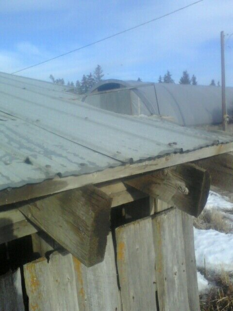 Cheap roofing?-2-6-.jpg