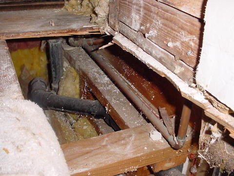 New Minnesota homeowner & found rotten bath subfloor...HELP!-2.jpg