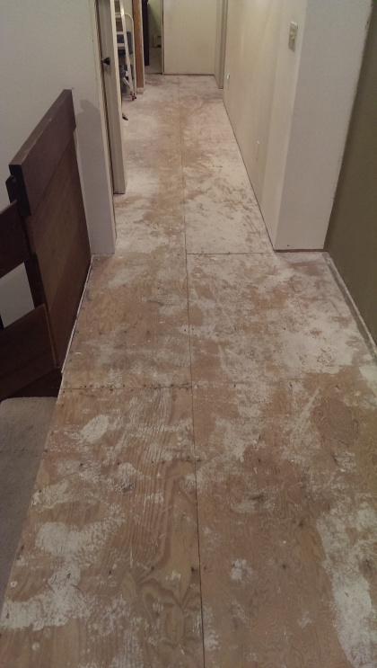 Prepping for Hardwood: SCREWS + EXISTING NAILS into SUBFLOOR OVERKILL?-2.jpg