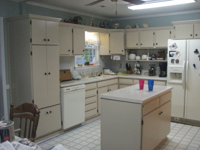 Tan Kitchen Cabinets. Painting Kitchen Cabinets  Back wall 2009 06 074 jpg Wall Interior Decorating DIY