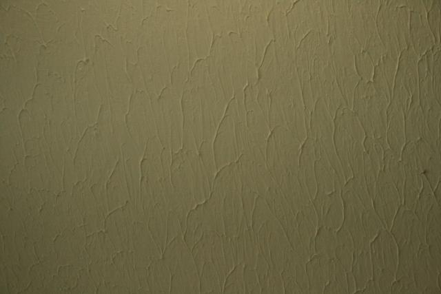Textured drywall ceiling-2009_09140081.jpg