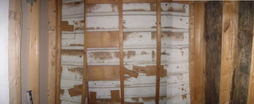 Rotted floor joists and wall edge-2010feb9_6.jpg