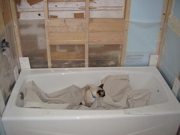 Help Mike, Bud, Jazman: Cracks in grout line in new tile wall.-2010jul2_5.jpg