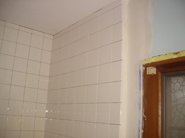Jim's downstairs bathroom project-2010sep30_5.jpg