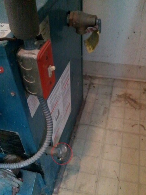 Need advice RE: purging air from baseboard hot water heating system-2011-01-14-10.20.34.jpg