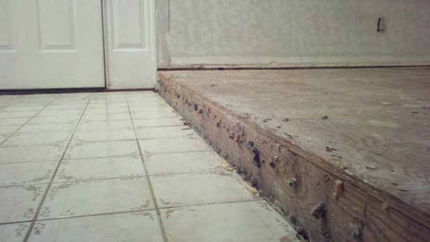 What to do with a square-edged living room step?-2011-12-28_20-33-47_663.jpg