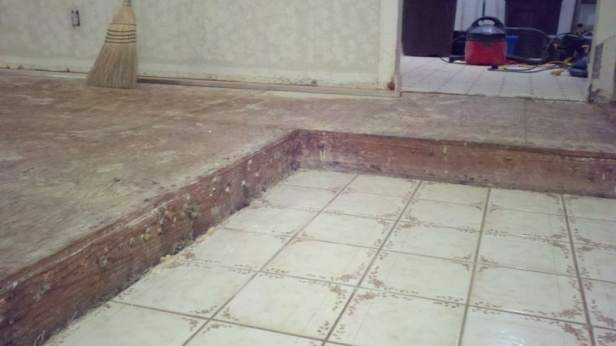 What to do with a square-edged living room step?-2011-12-28_20-34-04_193.jpg