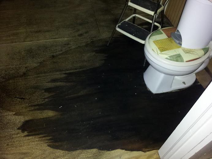 Black Mold????-2012-04-25-19.11.59.jpg
