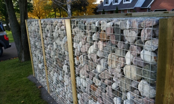privacy fence-2012-10-16-19.08.36.jpg