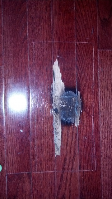 Hardwood Floor Repair Nightmare-2012-11-10_15-16-58_987.jpg