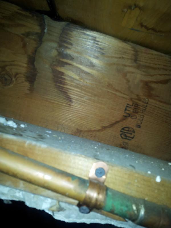 Floor joist water damage-20120113_012552.jpg