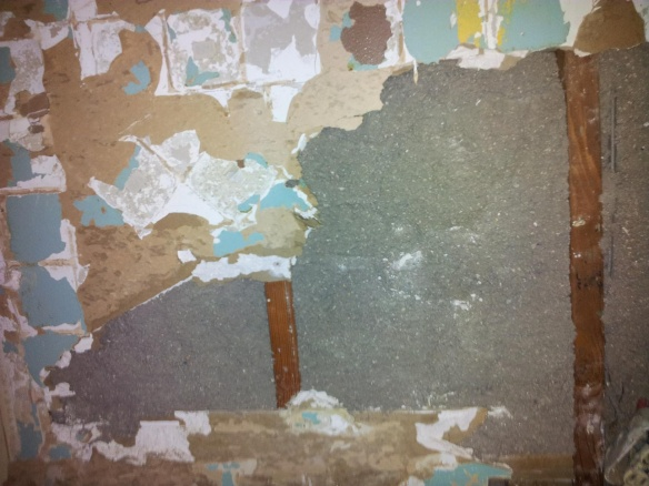 Existing blow in insulation vs new insulation - Keep or redo?-20120216_215539.jpg