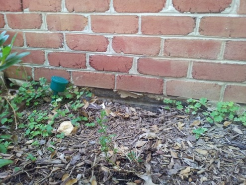 Dirt erosion underneath concrete front steps, fill with gravel?-20120709_165214.jpg