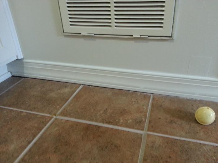 Gab between floor trip and tile-20121015_115322.jpg