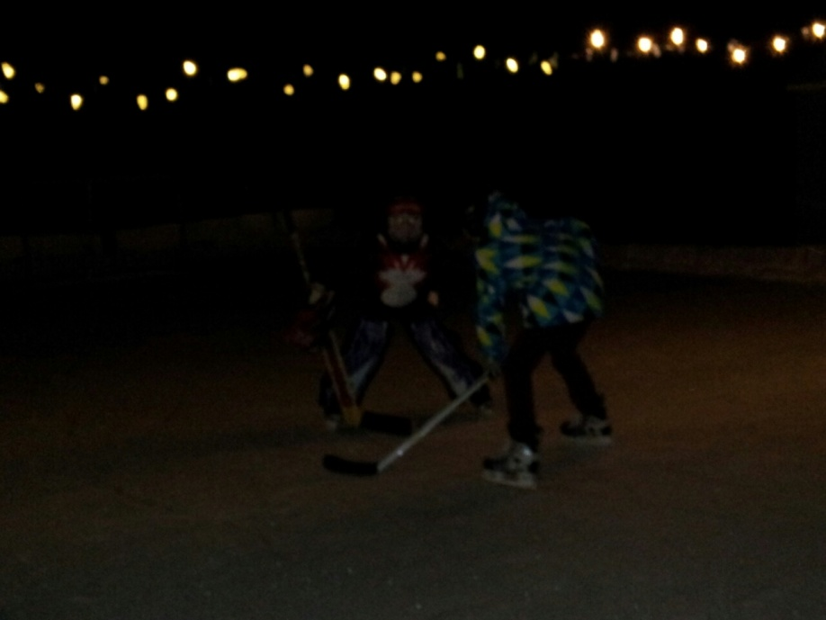 Backyard Skating Rink - Project Showcase - Page 8 - DIY ...