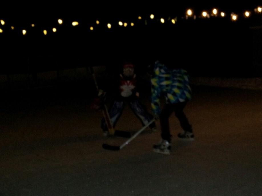 Backyard skating rink-2013-01-23-20.55.03.jpg