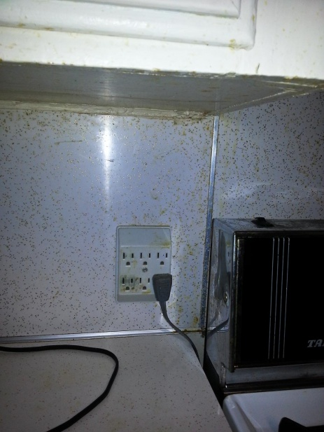 How would you wire this?-2013-12-28-16.44.17.jpg