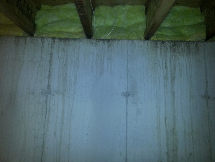 Should I put new insulation in the basement?-20130420_134853.jpg