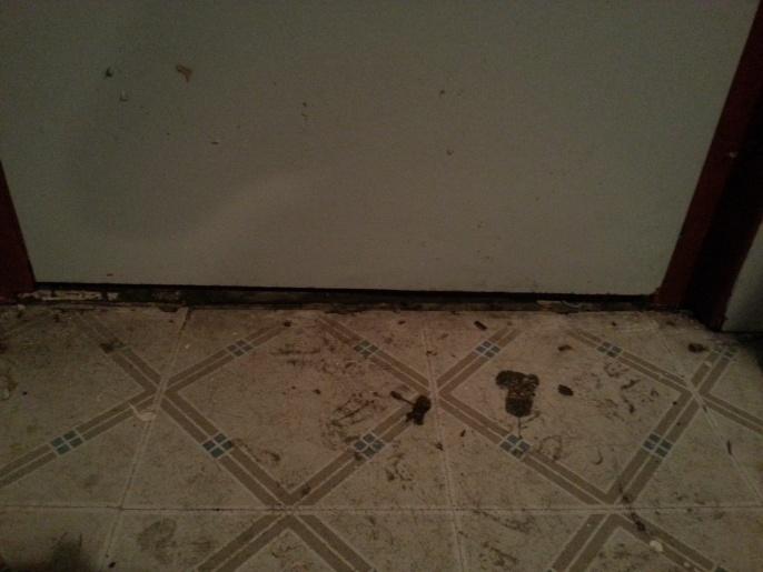 Walk-out basement/water leaking-20130629_194808.jpg