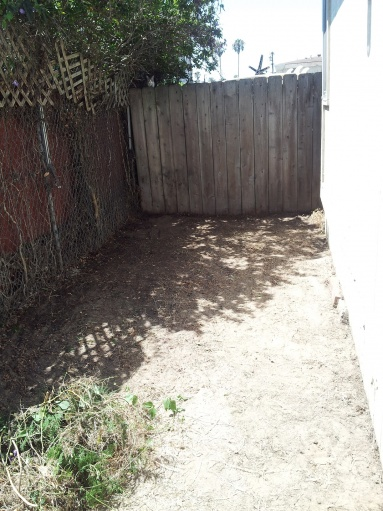 Indoor Outdoor Carpet Over Dirt Landscaping Lawn Care Diy