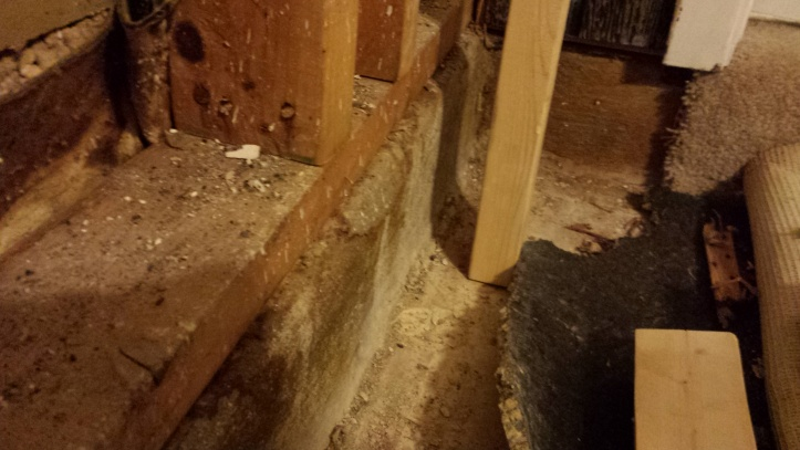 Framing - Floor to ceiling sunken living room-2014-06-29-00.09.49.jpg