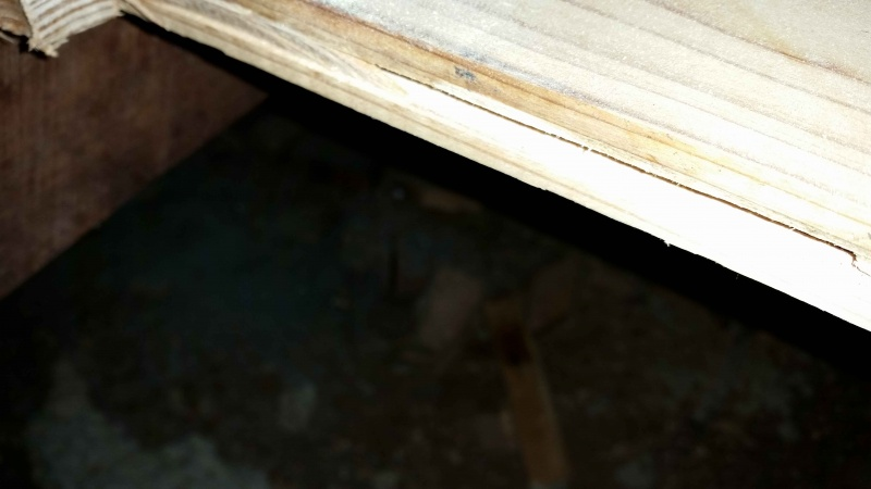 Damp area on floorboards-20140509_170124-copy.jpg