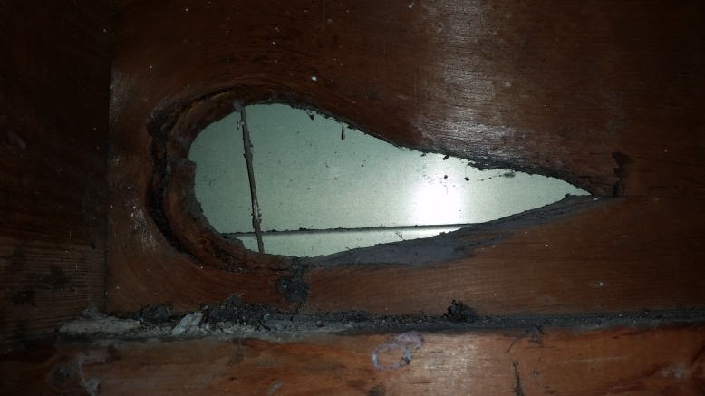 My Rim Joist Air Sealing Fun...-20141125_202931-1-.jpg
