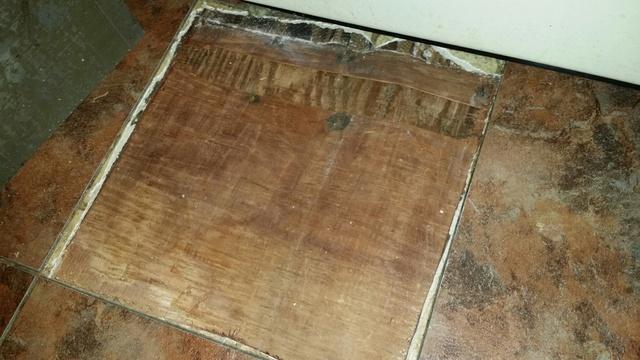 Mold Under Kitchen Floor Tile Flooring Diy Chatroom