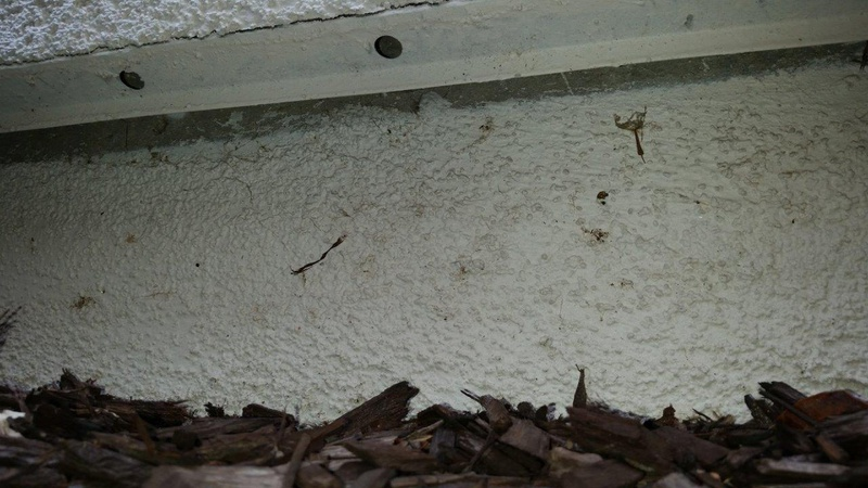 Sealing Gap Between Stucco And Foundation Building