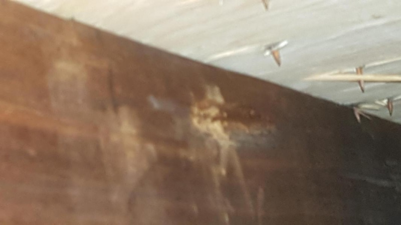 Please help> brand new roof shingle and plywood moldy attic after 1 winter-20160831_164348_1472844021469.jpg