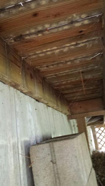 Mobile Home Deck- Help Needed-20160911_131249_resized.jpg