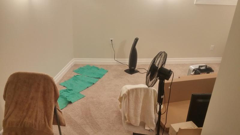 carpet wet in basement building construction diy chatroom home