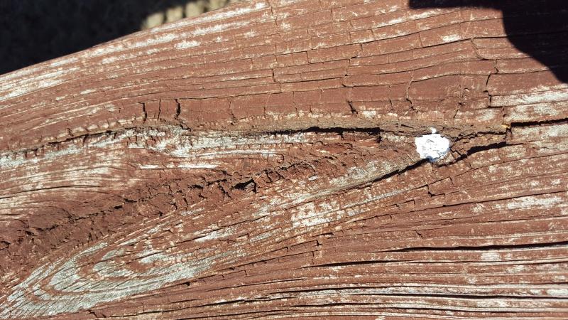 Deck Restoration Project-20170318_123022.jpg