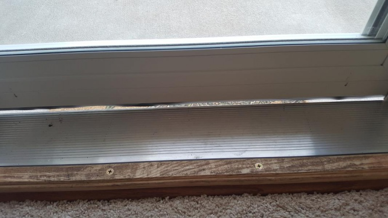 Larson Door Sweep Amp Sc 1 St All About Doors And Windows