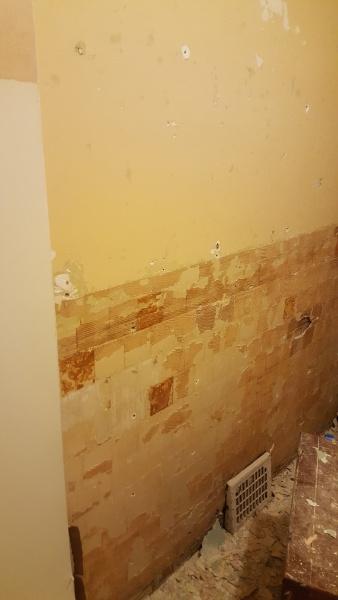 Preparing my Bathroom Wall for Tile-20170726_214114.jpg