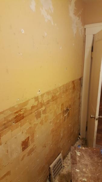 Preparing my Bathroom Wall for Tile-20170726_214119.jpg