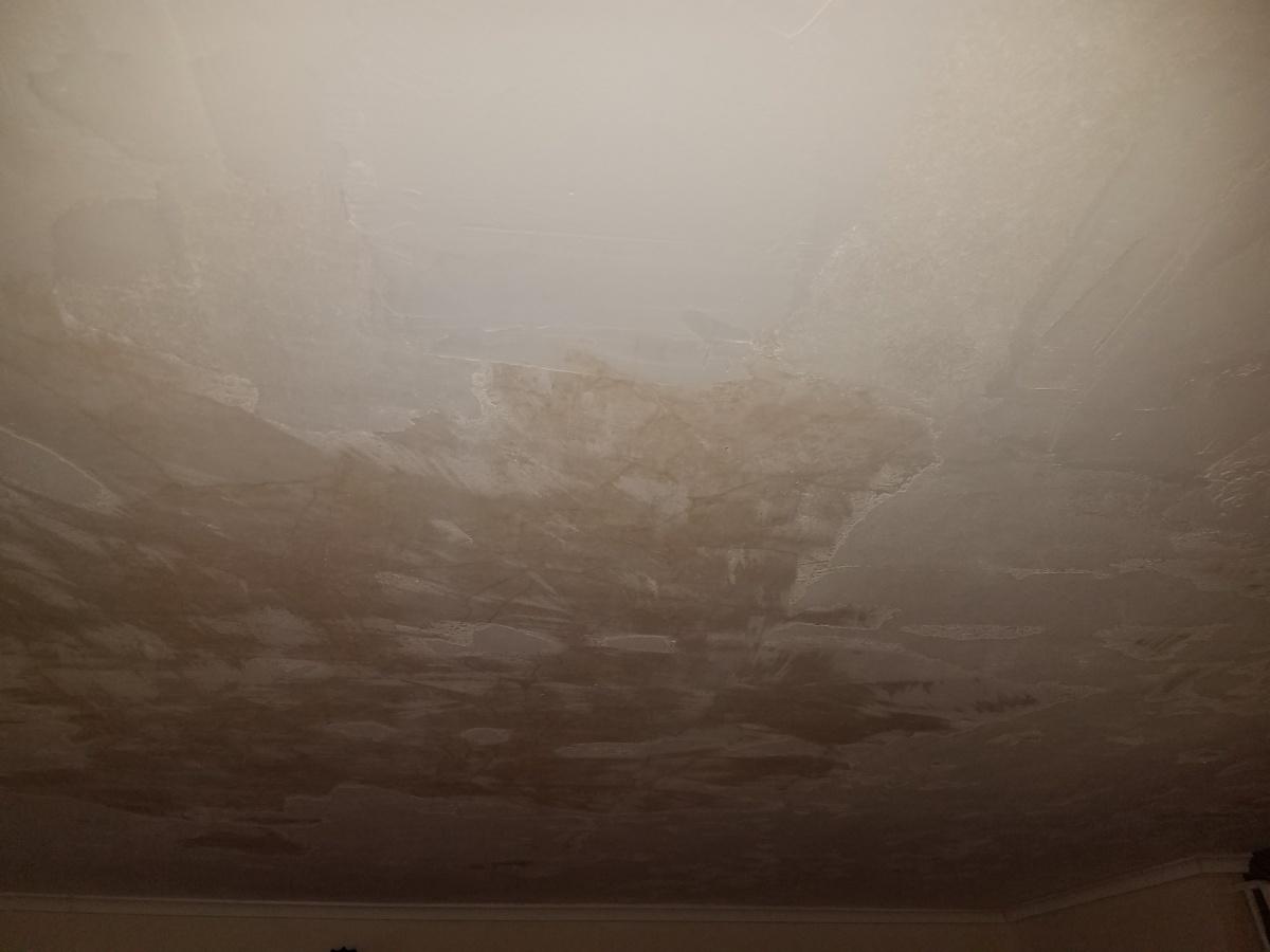 Prime Before Skim Coating This Plaster Ceiling 20180223 132502 Jpg