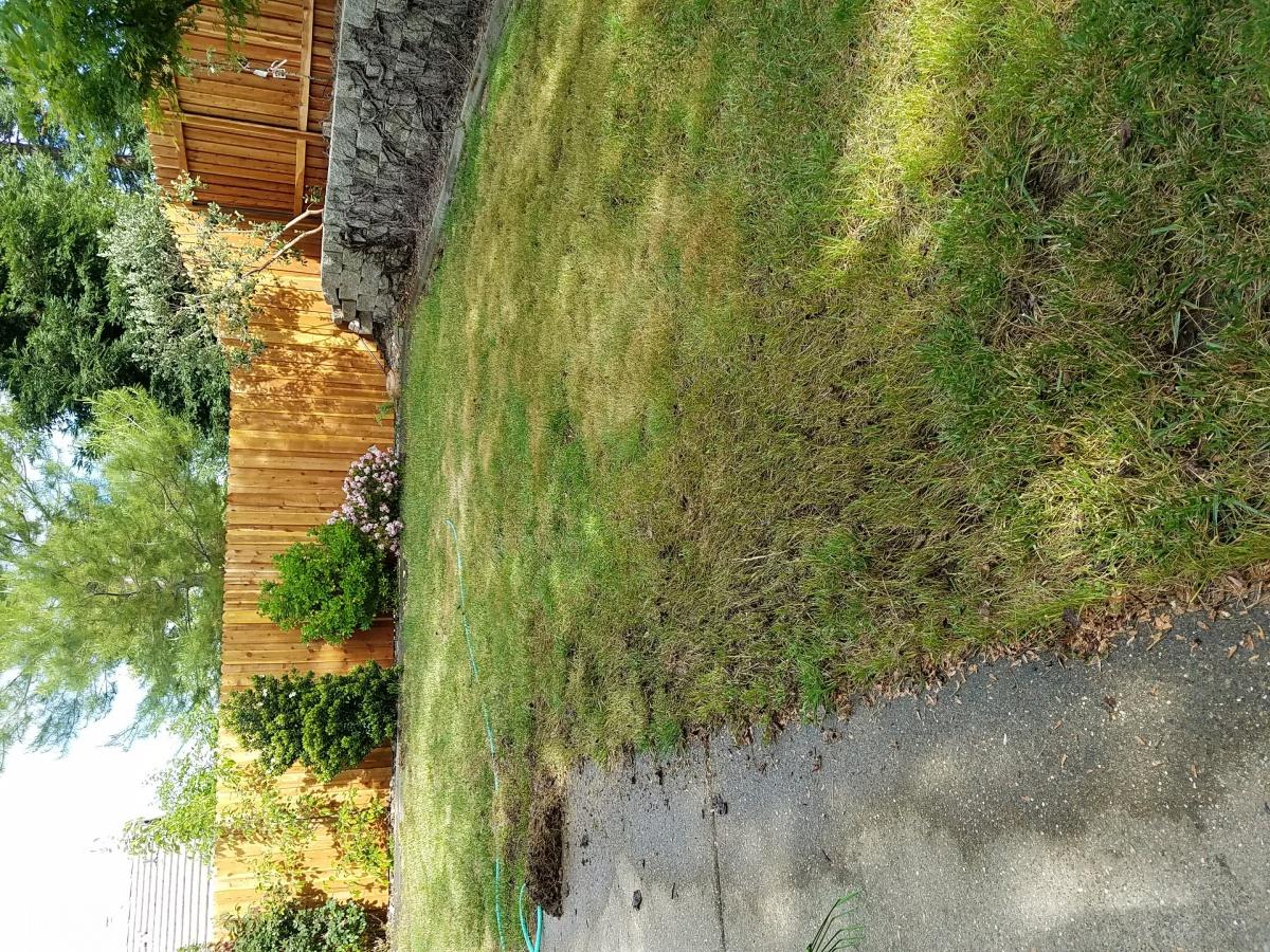 Ugly lawn fix-20180422_165532.jpg