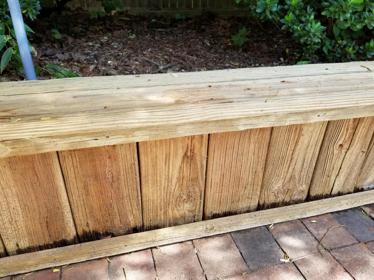 wood deck needs some love-20180619_100726_1529440728970.jpg