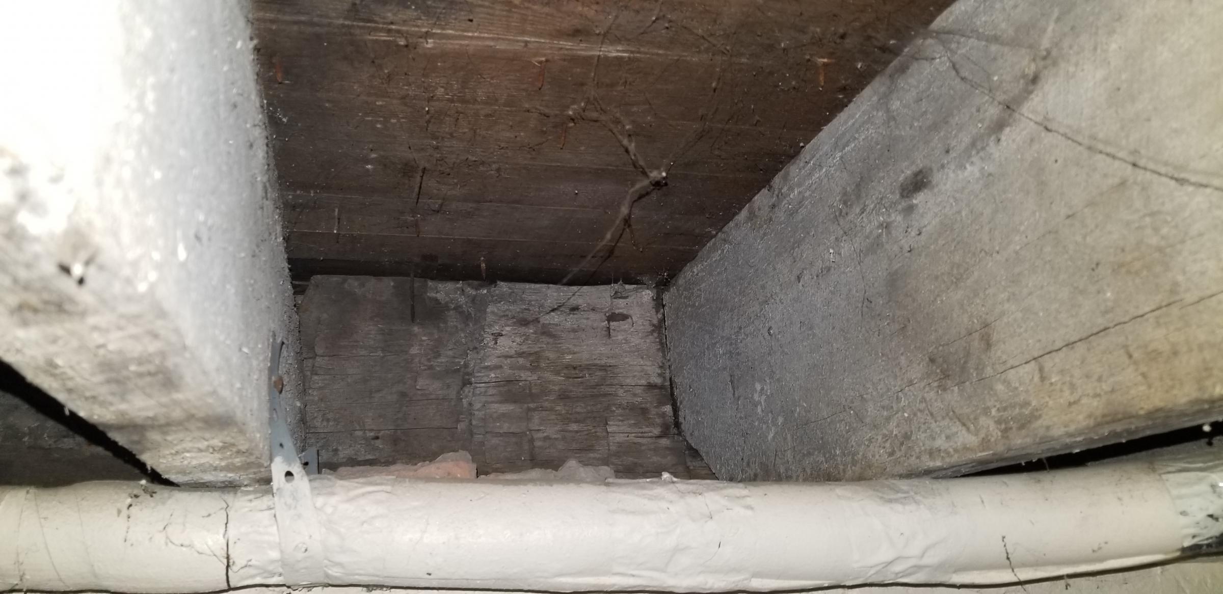 Adding 2x8 studs to 100 year old 2x4 walls-20181229_174335_1546124363357.jpg