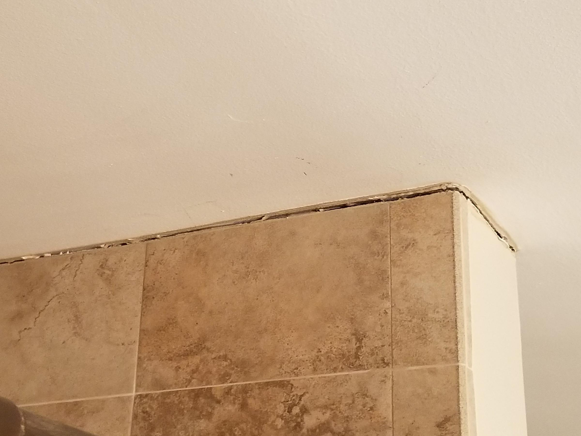 Shower ceiling......-20190117_175806.jpg