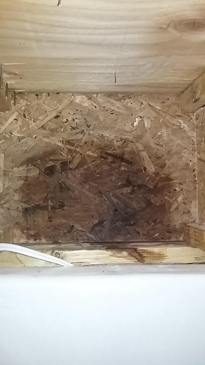 Does foam board trap moisture?-20190124_221741.jpg