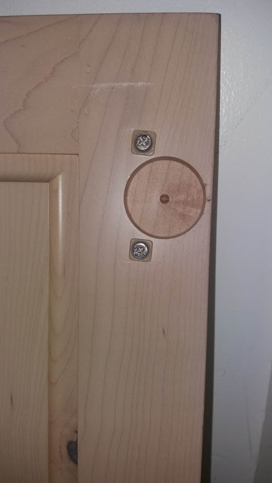 Flush Door Hinge-20190405_103554.jpg